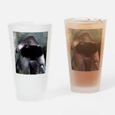 Mother Anteater nursing her young Drinking Glass