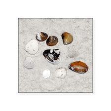 "beachshellssafe Square Sticker 3"" x 3"""