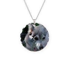 Alaskan Klee Kai hiding in g Necklace