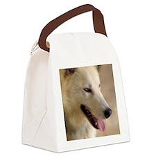 winter_air_fin Canvas Lunch Bag