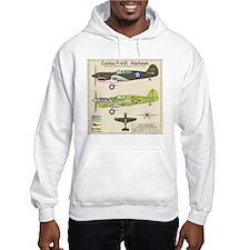 P-40_Co-Pilot_Back Hoodie