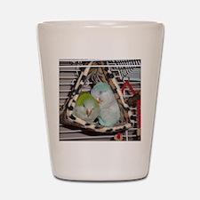 DSC00019 Shot Glass
