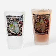 DSC00019 Drinking Glass