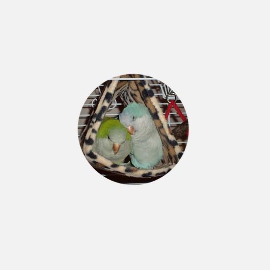 DSC00019 Mini Button