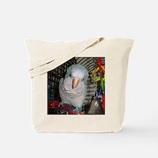 DSC00271 Tote Bag
