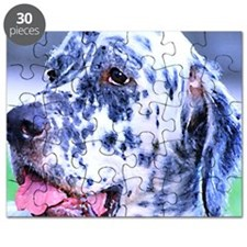 English Setter Puzzle