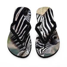 nuzzling zebras Flip Flops