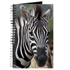 single zebra Journal