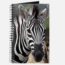 single zebra Journal