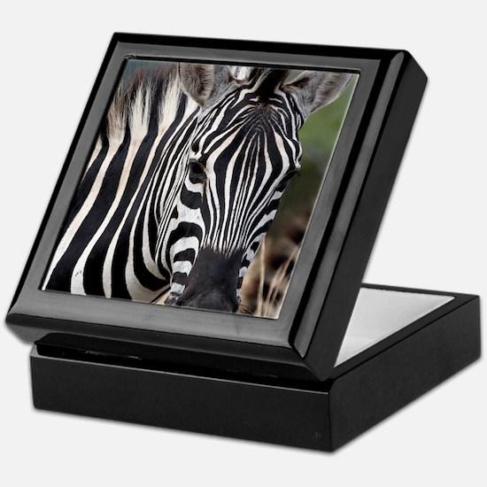 single zebra Keepsake Box