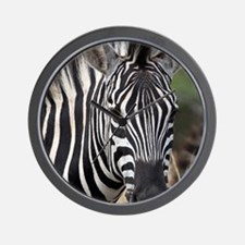 single zebra Wall Clock