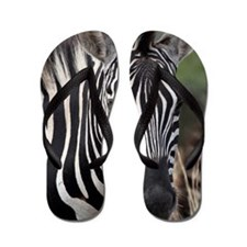 single zebra Flip Flops