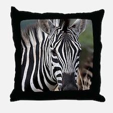 single zebra Throw Pillow