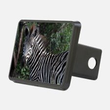 young zebra note Hitch Cover