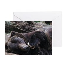 A Sleeping Grizzly Bear Greeting Card