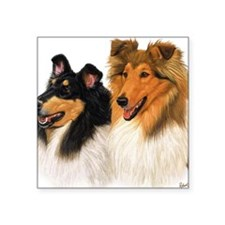 "Double Rough Collie Square Sticker 3"" x 3"""