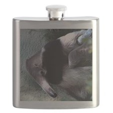 Mother Anteater nursing her young Flask
