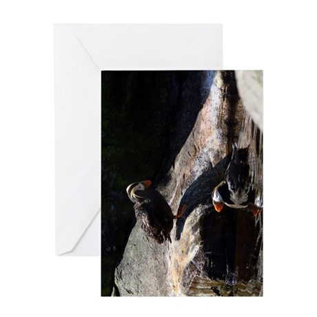 Two Tufted Puffins Greeting Card