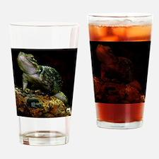 Close-up of a lizard Drinking Glass