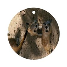 Two Baby Meerkats Round Ornament