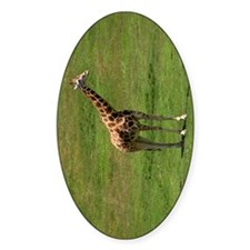 A UGANDA GIRAFFE Decal