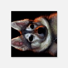 "Alaskan Klee Kai golden col Square Sticker 3"" x 3"""