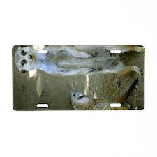 Smiling Meerkat Aluminum License Plate