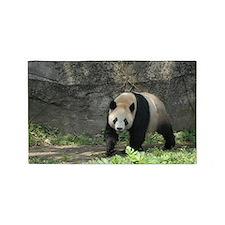 china panda. 3'x5' Area Rug