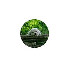 Kate Pose_IGP1535 copy Mini Button