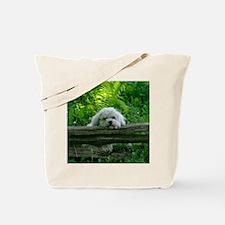 Kate Pose_IGP1535 copy Tote Bag