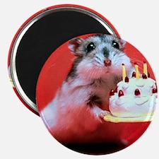 hamster-birthday Magnet