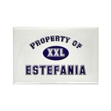 Property of estefania Rectangle Magnet