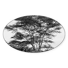 tree card Decal