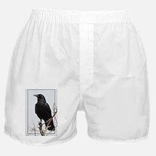 ficrIMG_8611 Boxer Shorts