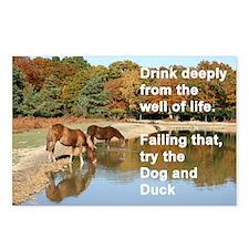 Ponies card Postcards (Package of 8)