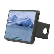 Nome Spring Breakup-LG Hitch Cover