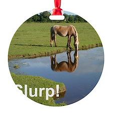 Slurp water bottle Ornament