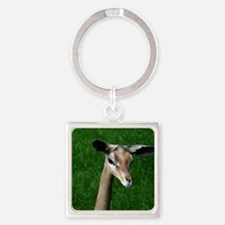 A Gerenuk Antelope Square Keychain