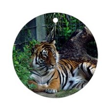 A tire Indochinese Tiger Round Ornament