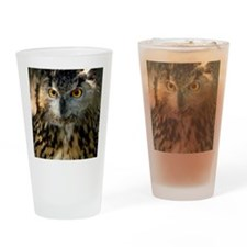 A Bengalese Eagle Owl Drinking Glass
