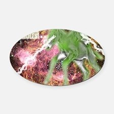 SpaceMulesLogo Oval Car Magnet