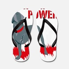 Tripawd Power Blanket Flip Flops