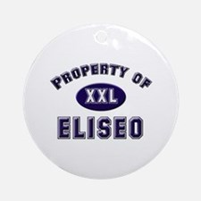 Property of eliseo Ornament (Round)
