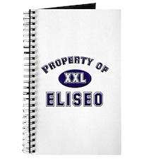Property of eliseo Journal