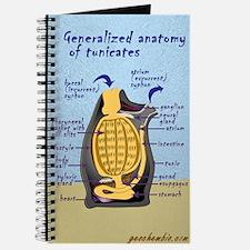 Tunicate Journal