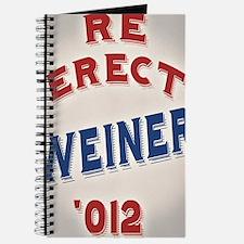 re-erect-weiner-CRD Journal