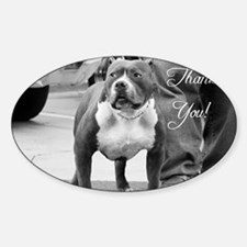 thank you pitbull Decal