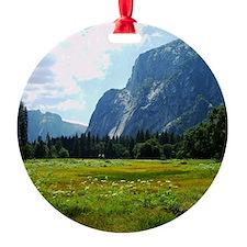 Meadow, Yosemite Ornament