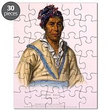 SpringFrog_CherokeeChief Puzzle