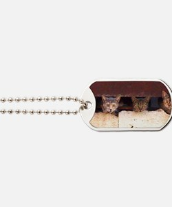 4Cats_FINAL-NT-LARGE-INITIALS_150dpi_PNG Dog Tags